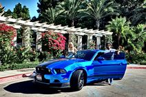 Mustang GT 5.0 Chrome Edition / Bild: J.G.Behlmann